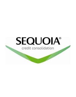 Обзор задолженности в сегменте автокредитования на 01.10.2015